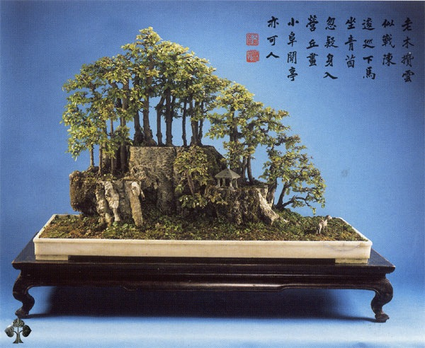 Chinese penjing landscape
