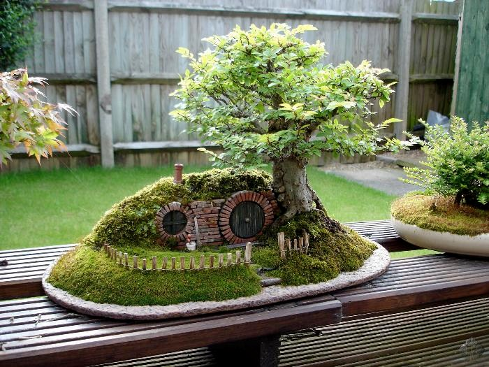 Bag End Bonsai tree landscape