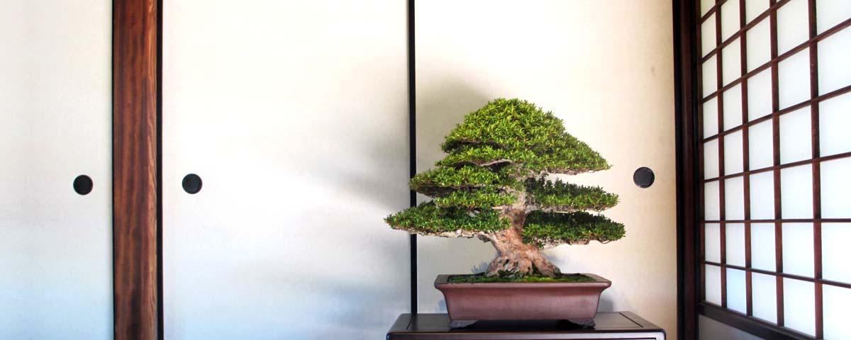 Affichage de tokonoma classique